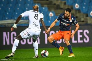 L'album photo du match entre le Montpellier HSC et le FC Lorient.