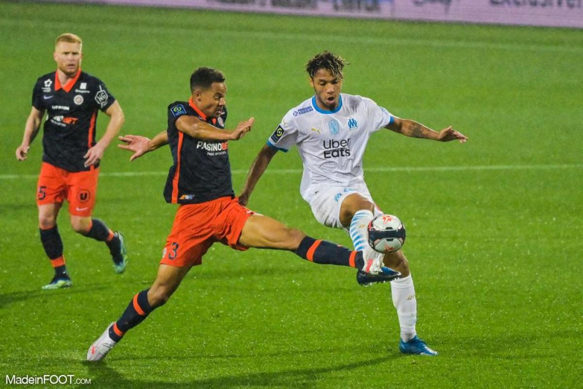 Daniel Congré, le défenseur central du Montpellier HSC.